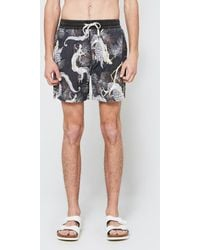 Insight - Dragons Boardshort - Lyst