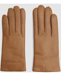 Hestra - Hairsheep Cashmere Gloves In Camel - Lyst