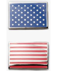 Prize Pins - Stars And Stripes Pin - Lyst