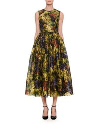 Dolce & Gabbana - Sleeveless Fit-and-flare Grape-print Cocktail Dress - Lyst