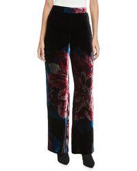 Trina Turk - Penelope Floral Velvet Wide-leg Pants - Lyst