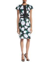 Tadashi Shoji - Cap-sleeve Floral Sheath Dress W/ Lace Insert At Front - Lyst