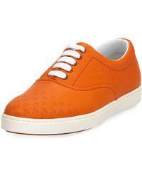 Malib Palms sneakers - Yellow & Orange Tomas Maier LOGd8bq
