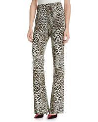 Badgley Mischka - Boot Cut Leopard-print Pants - Lyst
