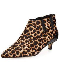 Donald J Pliner - Ilex Leopard-print Kitten-heel Booties - Lyst
