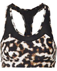 The Upside - Chrissy Mesh-trimmed Leopard-print Stretch Sports Bra - Lyst