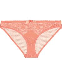 Stella McCartney - Ophelia Whistling Stretch-leavers Lace Briefs - Lyst