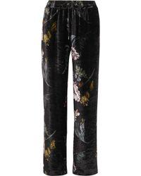 Markus Lupfer - Amery Floral-print Velvet Straight-leg Pants - Lyst