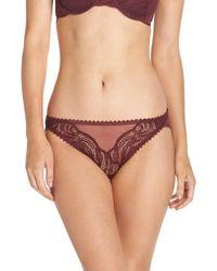 Calvin Klein - Lace Bikini - Lyst