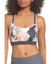 Ted Baker - Palace Gardens Sports Bra - Lyst
