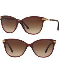 526d040f8f Burberry - 57mm Cat Eye Sunglasses - Translucent Oxblood - Lyst