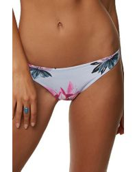O'neill Sportswear - Sydney Bikini Bottoms - Lyst