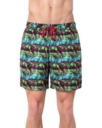 Rainforest - 'hypercolor Palm' Swim Trunks - Lyst
