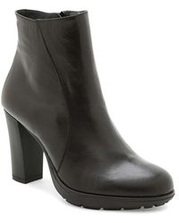Andre Assous | 'misty' Water-resistant Leather Bootie | Lyst
