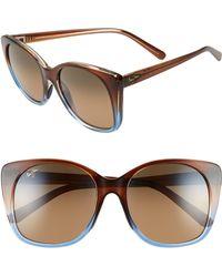 Maui Jim - Mele 55mm Polarizedplus2 Round Cat Eye Sunglasses - Translt Dk Choco Blue/hcl Brnz - Lyst