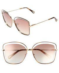 Chloé | 60mm Halo Frame Sunglasses - Havana/ Bronze | Lyst