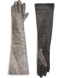Badgley Mischka - Badgley Mischka Velvet & Leather Long Gloves - Lyst