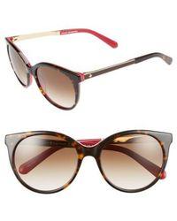 423c2c280c Lyst - Kate Spade New York  amayas  53mm Cat Eye Sunglasses in Black