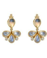 Temple St. Clair | Temple St. Clair Royal Blue Moonstone & Diamond Drop Earrings | Lyst