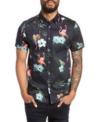 Ted Baker - Chela Slim Fit Tropical Print Sport Shirt - Lyst