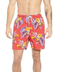 Tommy Bahama - Naples Mahalo Memories Swim Trunks - Lyst