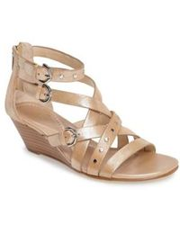 Isola | Petra Strappy Wedge Sandal | Lyst