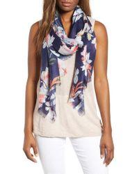 Nordstrom - Eyelash Trim Print Cashmere & Silk Wrap - Lyst