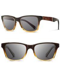 Shwood - 'canby' 54mm Acetate & Wood Sunglasses - Sweet Tea/ Elm Burl/ Dark Grey - Lyst
