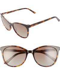 Ted Baker - 55mm Polarized Cat Eye Sunglasses - Lyst