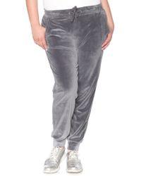 Slink Jeans - Velour Jogger Pants - Lyst