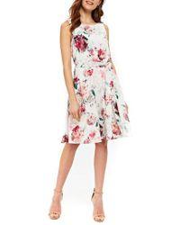 Wallis   Pretty Bloom Fit & Flare Dress   Lyst