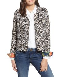 Tommy Bahama - Cat's Meow Jacket - Lyst