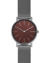 Skagen - Signatur Titanium Mesh Strap Watch - Lyst