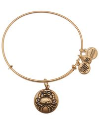 ALEX AND ANI - Cancer Expandable Bangle - Lyst