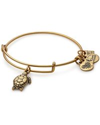 ALEX AND ANI - International Exclusive Sea Turtle Charm Expandable Wire Bracelet - Lyst