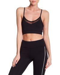 Threads For Thought - Celine Sports Bra - Lyst