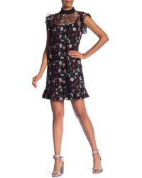 2075a858584 Cece by Cynthia Steffe - Embroidered Floral Mesh A-line Dress (plus Size)