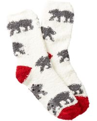 Pj Salvage - Bear Animal Themed Socks - Lyst