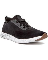 Steve Madden - P-cren Sneaker - Lyst