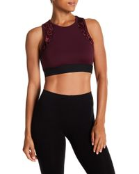 Warrior by Danica Patrick Active - Velvet Sports Bra - Lyst