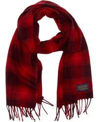 Pendleton - Whisper Merino Wool Muffler - Lyst