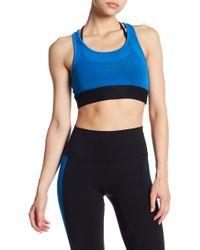 Alo Yoga - Glare Mesh Sports Bra - Lyst