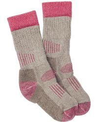 Smartwool - Hunt Medium Crew Socks - Lyst