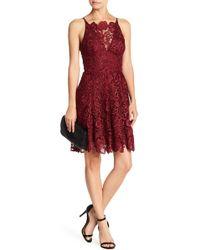 Dress the Population - 'hayden' Crochet Lace Fit & Flare Dress - Lyst