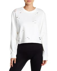 Sam Edelman - Cropped Distressed Crew Neck Sweater - Lyst