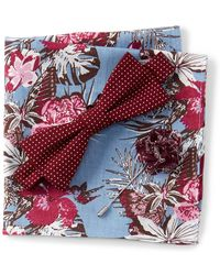 Original Penguin - Zenzo Dot Bow Tie, Pocket Square, & Lapel Pin Set - Lyst