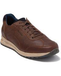 Josef Seibel Thaddeus 01 Sneaker - Brown