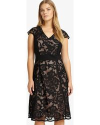 Phase Eight - Cleo Dress - Lyst