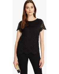 Phase Eight - Tessa Lace Top - Lyst