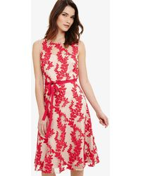 Phase Eight - Adele Embroidered Dress - Lyst